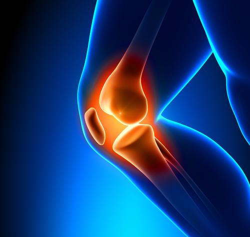 膝の関節痛