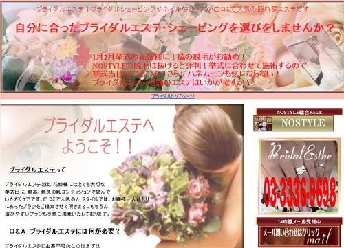 Bridal Hair&Make Veil