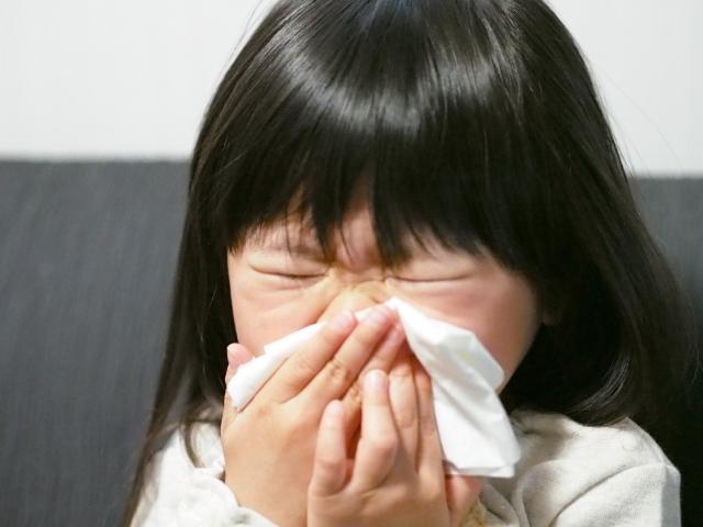 花粉症の改善や予防のためのサプリメント